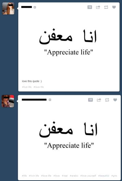 "The wrong Arabic translation for ""appreciate life"""